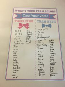 What's Your Team Color Cast Your Vote Team Pink or Team Blue